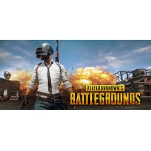 絕地求生:大逃殺 (戰場 Project) 標準版 PLAYERUNKNOWN'S BATTLEGROUNDS PUBG 支援簡中